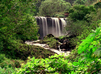 Kawi  Waterfall Landscapes